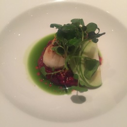 Pan Seared Scallops with Beetroot Risotto