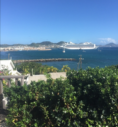 View of the Cruise ship from Palm Court