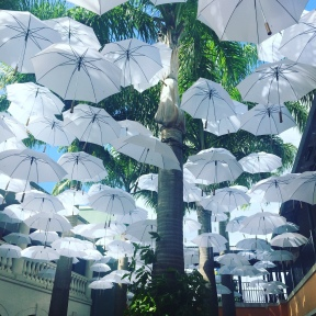 Umbrella's at Limegrove